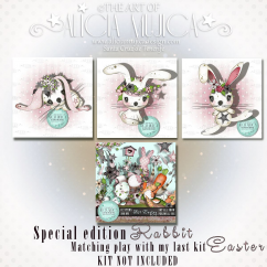 Rabbit special edition by Alicia Mujica 2018