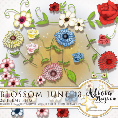 Blossom June by Alicia Mujica 2018