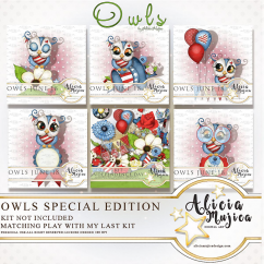 Owls June 2018 by Alicia Mujica