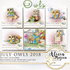 Owl July by Alicia Mujica 2018