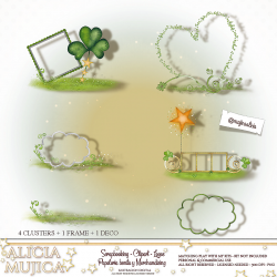 Saint Patricks Cluster sets by Alicia Mujica 2019