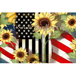 Kit USA & Sunflower by Alicia Mujica 2020