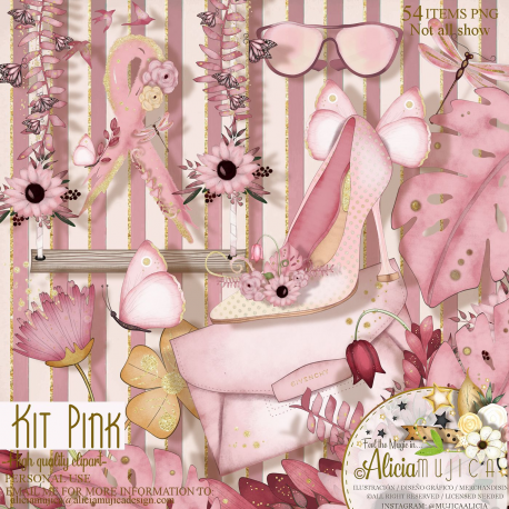 Kit Pink by Alicia Mujica 2021